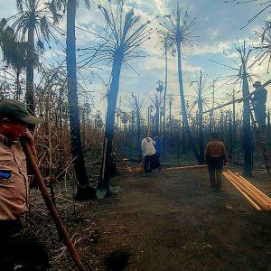 Labores de rescate de las zonas afectadas por los incendios en Bolivia.