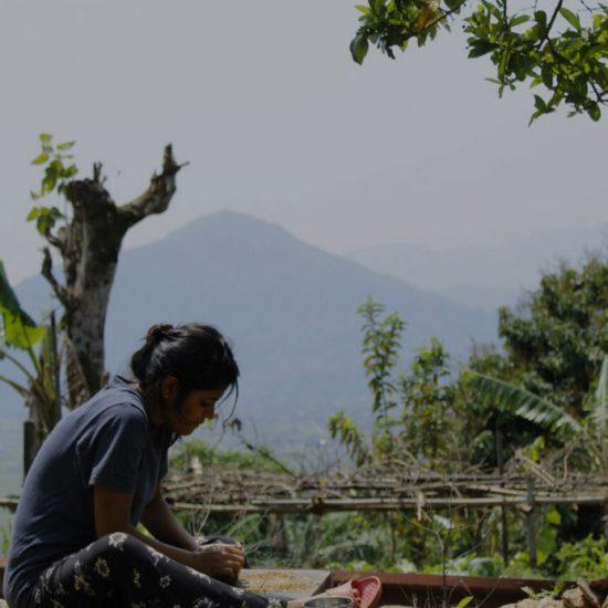 Voluntariado en granja Nepal